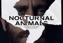 nocturnal_animals_plakat