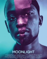 "Plakat von ""Moonlight"""