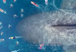 the-meg-trailer