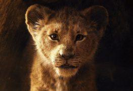 """Filmbilder von """"The Lion King"""""""